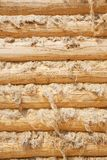 Pine balk wall. Natural background pattern of pine balk wall Stock Photography