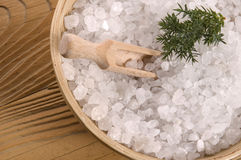 Pine bath items. alternative medicine Royalty Free Stock Photo