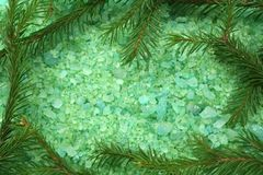 Pine bath salt. Background of sea salt is green, with an extract of pine needles Royalty Free Stock Photo