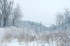 Pine Bend Bluffs Winter Vista Stock Images