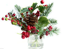 Pine and berry arrangement Royalty Free Stock Photo