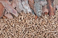 Pine  biomass and pellets Stock Images