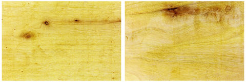 Pine board knots collage copy space background Stock Photography