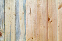 Pine boards different textures fit tightly. Located across the frame. Seen of wood bark Royalty Free Stock Photos
