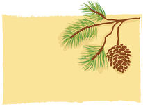 Pine branch card vector. Illustration of a fir-tree branch on pale yellow background + vector eps file stock illustration