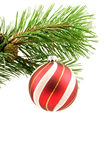 Pine branch with christmas ball Stock Photos