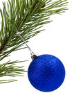 Pine branch with  christmas bauble Stock Photo