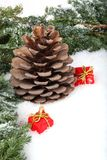 Pine branch with cone and gift boxes. Laying on snow Royalty Free Stock Photo