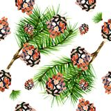 Pine branch with cone hand drawn seamless pattern illustration. Surface decoration Royalty Free Stock Photo