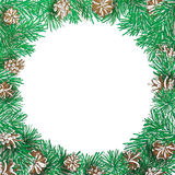 Pine branch and cone round frame. Stock Photography