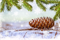 Pine branch with cone with  snow. Christmas Card Royalty Free Stock Photo