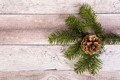 Pine branch and cone on a wooden background. Christmas decoration Stock Photography