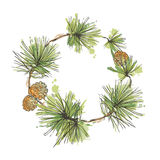 Pine branch with cone wreath vector. Pine branch wreath with cone hand drawn vector illustration Holiday design for greeting cards, calendars, posters, prints Royalty Free Stock Images