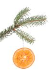 Pine branch with dried orange slice isolated Royalty Free Stock Photos