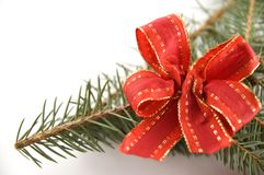 Pine branch with a red bow Stock Photo