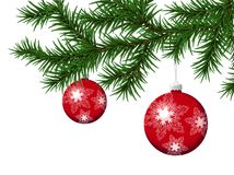 Pine Branch With  Red Christmas Balls. Vector Royalty Free Stock Image