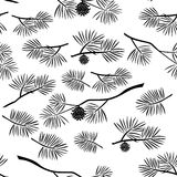 Pine Branch, Seamless Background. Seamless Pattern, Black Silhouette Pine Branches with Cones and Needles on White Background. Vector Royalty Free Stock Images
