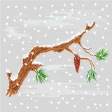 Pine branch with snow christmas theme vector Royalty Free Stock Photos