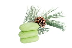 Pine branch with soap Royalty Free Stock Images