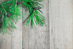 Pine branch on a wooden boards Royalty Free Stock Photos