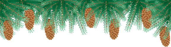 Pine branches stock illustration