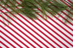 Pine branches with candy cane stripes Stock Photo