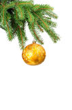 Pine branches and christmas ball. Isolated on white background Stock Photography