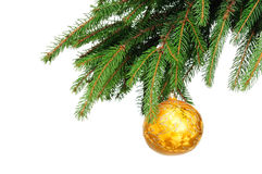 Pine branches and christmas ball. Isolated on white background Royalty Free Stock Photo