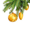 Pine branches and christmas balls Stock Photos
