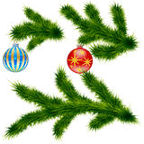 Pine branches. With Christmas balls Stock Photos