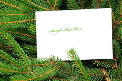 Pine branches and christmas card Royalty Free Stock Image