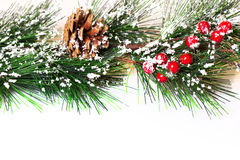 Pine branches with Christmas ornaments Royalty Free Stock Images