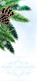 Pine branches with cones. On a blue background Royalty Free Stock Images
