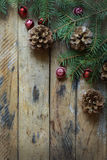 Pine branches,cones. Royalty Free Stock Image