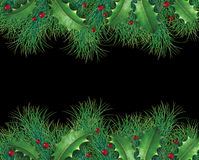 Pine branches with holly. And red berries for a christmas holiday decorative evergreen border representing festive winter garland ornament on a black background Stock Photos