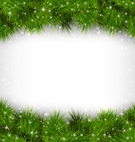 Pine branches like frame on grayscale. Shiny green pine branches like frame in snowfall on grayscale background Stock Photo
