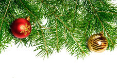 Pine branches and xmas ball Stock Photography