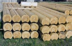 Pine building logs. Royalty Free Stock Photo