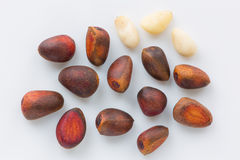 pine (cedar) nuts Royalty Free Stock Images