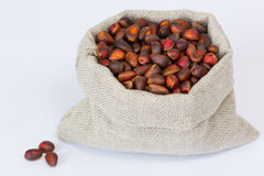 pine cedar nuts in the linen bag close up Stock Image