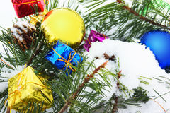 Pine Christmas ball Royalty Free Stock Photography