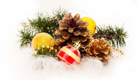 Pine and Christmas decorations Stock Images