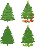 Pine Christmas Tree royalty free illustration