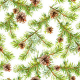 Pine christmas tree branches. Seamless pattern. Watercolor. Pine christmas tree branches. Seamless background. Watercolor Stock Photo