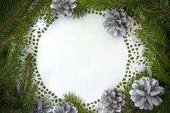 Pine christmas xmas spruce twig circle empty Royalty Free Stock Images