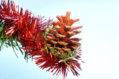 Pine cone. Purple christmas tree toy, left on a table royalty free stock images