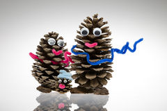 Pine cone Stock Photos