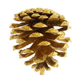 Pine cone. Golden pine cone isolated on white, clipping path included Royalty Free Stock Photography