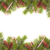Pine Cone Border Royalty Free Stock Images