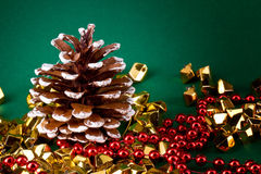 Pine cone card Royalty Free Stock Images